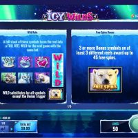 Icy Wilds Slot Game