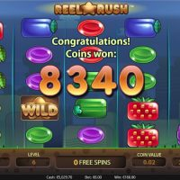 Reel Rush slot game review